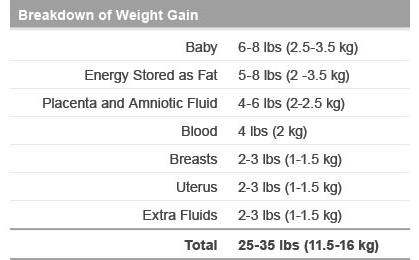 Breakdown of Weight Gain