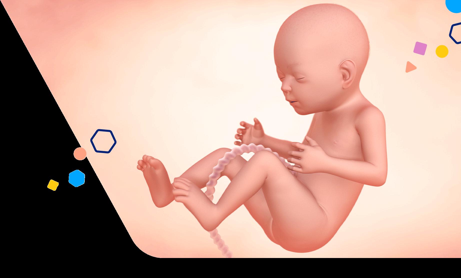 Mom Development 21 Weeks