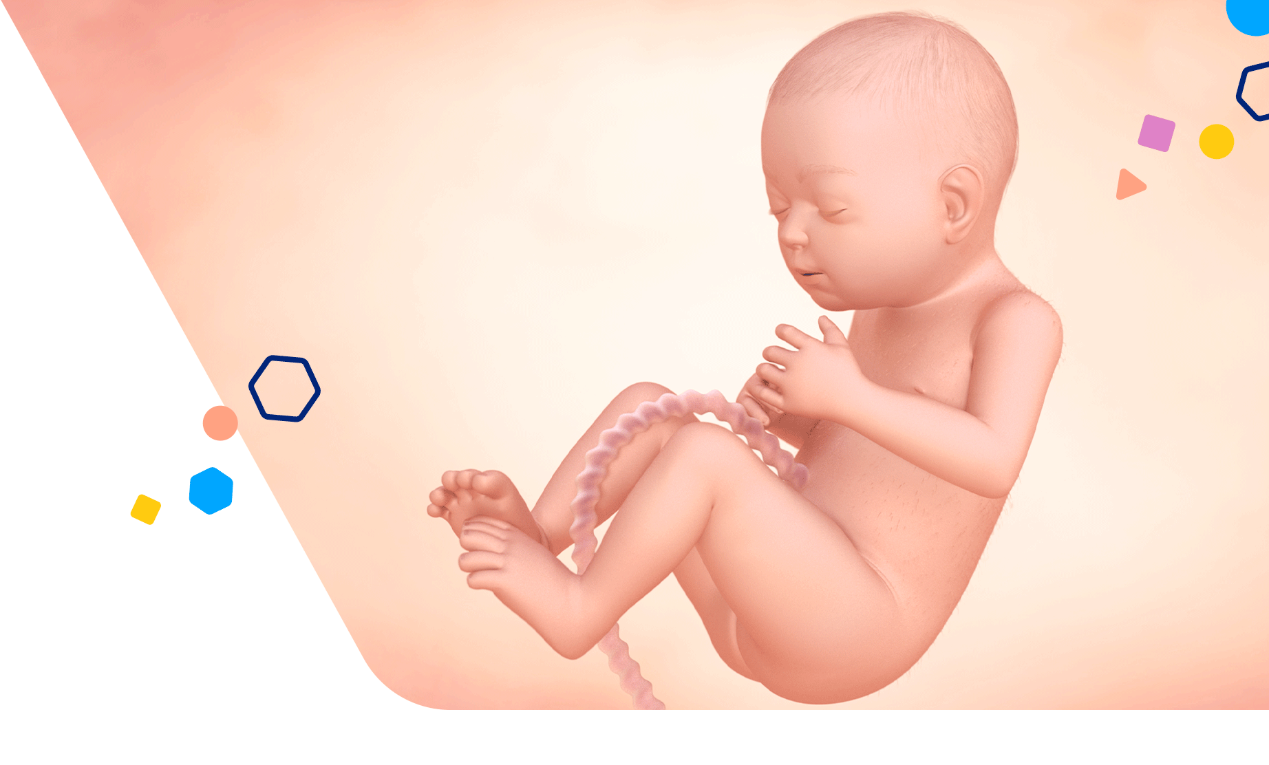 Mom Development 29 Weeks