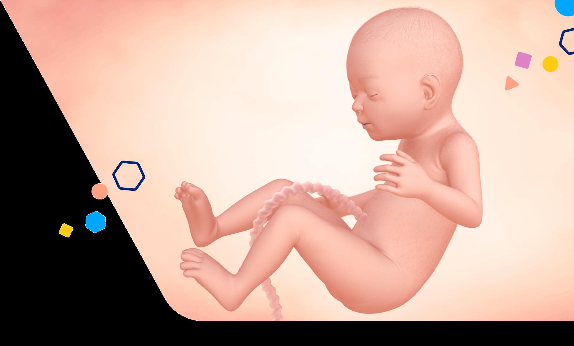 Mom Development 25 Weeks